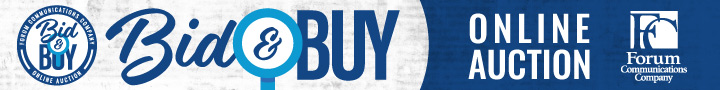 Bid and Buy Online Auction